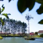 Descubra os encantos do Rancho P&R Luxo do Campo!